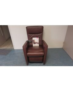 829 Elektrische sta op relax/fauteuil/stoel Prominent Viande